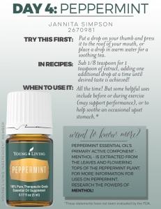 4-Peppermint